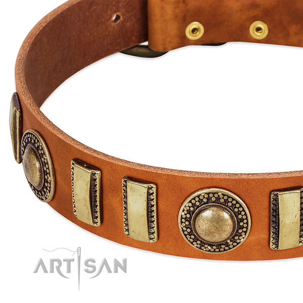 Gentle to touch natural leather dog collar with strong fittings