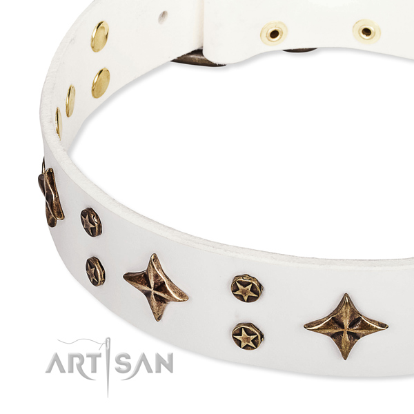Comfortable wearing adorned dog collar of finest quality natural leather