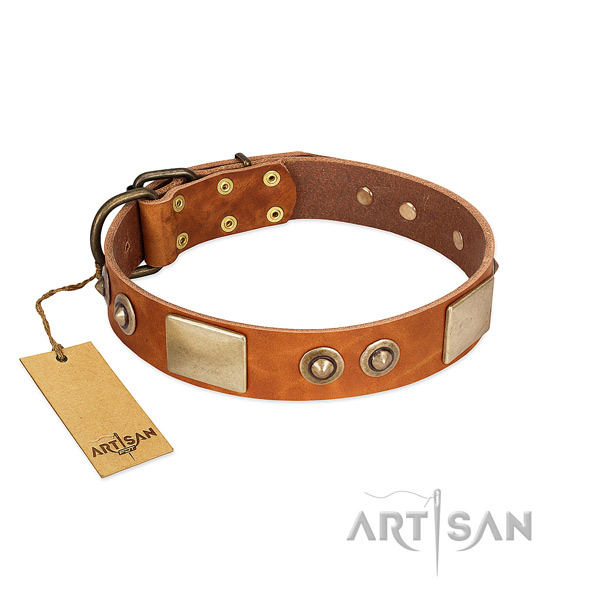Easy wearing natural genuine leather dog collar for everyday walking your four-legged friend