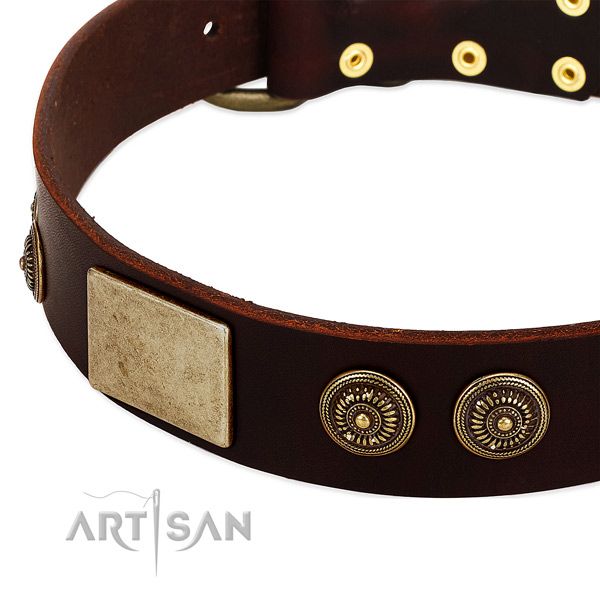 Reliable decorations on full grain natural leather dog collar for your dog