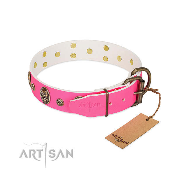 Rust resistant buckle on full grain genuine leather collar for daily walking your pet