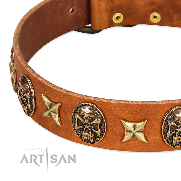 Corrosion proof hardware on leather dog collar for your doggie