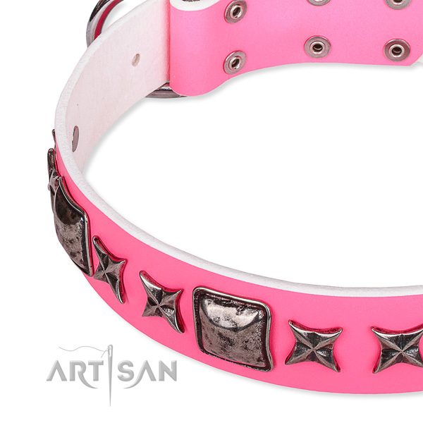 Fancy walking studded dog collar of reliable full grain genuine leather