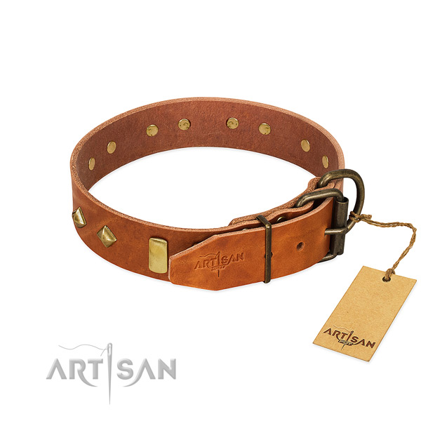 Daily walking full grain genuine leather dog collar with stylish design adornments