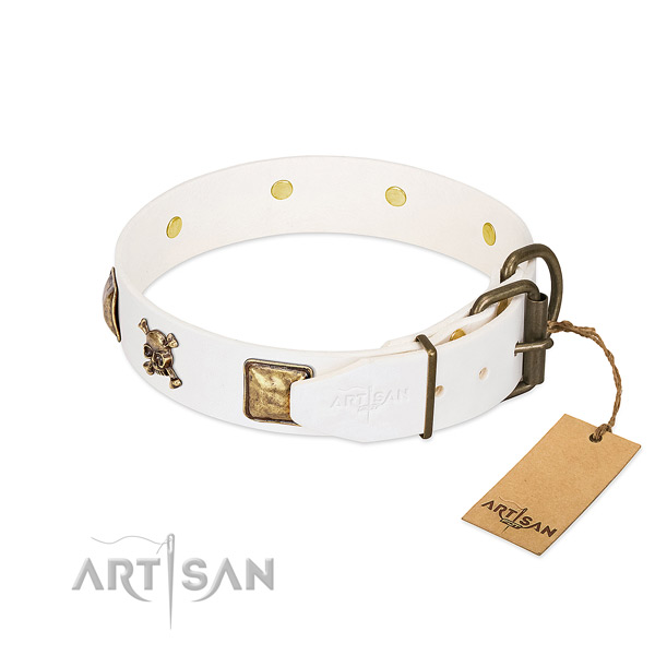 Everyday walking natural leather dog collar with amazing studs