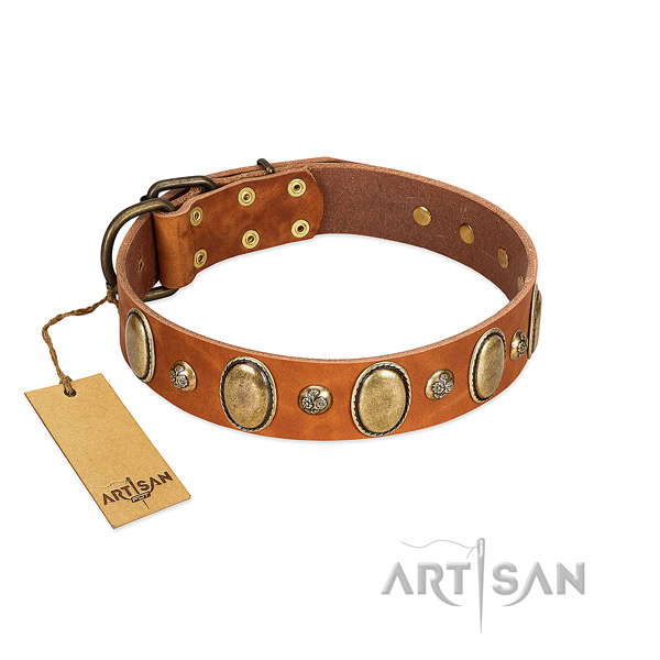 Genuine leather dog collar of reliable material with remarkable decorations