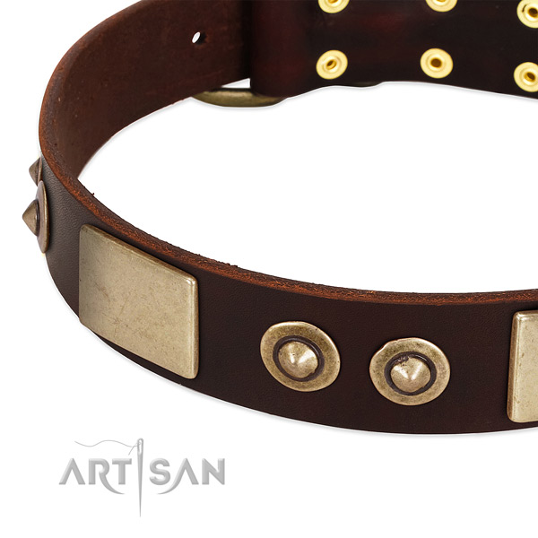 Rust-proof traditional buckle on full grain leather dog collar for your pet
