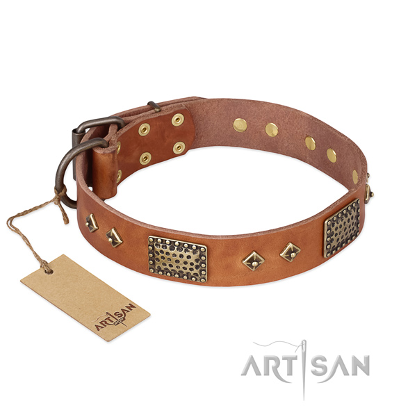 Fine quality full grain natural leather dog collar for fancy walking
