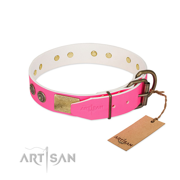 Corrosion proof fittings on leather collar for walking your four-legged friend