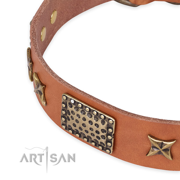 Genuine leather collar with reliable fittings for your lovely four-legged friend