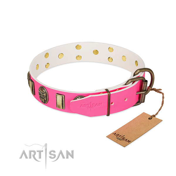 Corrosion resistant adornments on leather dog collar for your dog