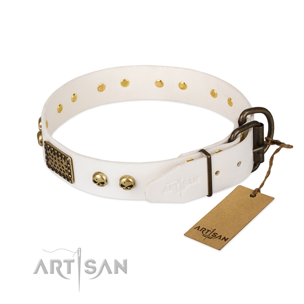 Adjustable full grain natural leather dog collar for everyday walking your canine