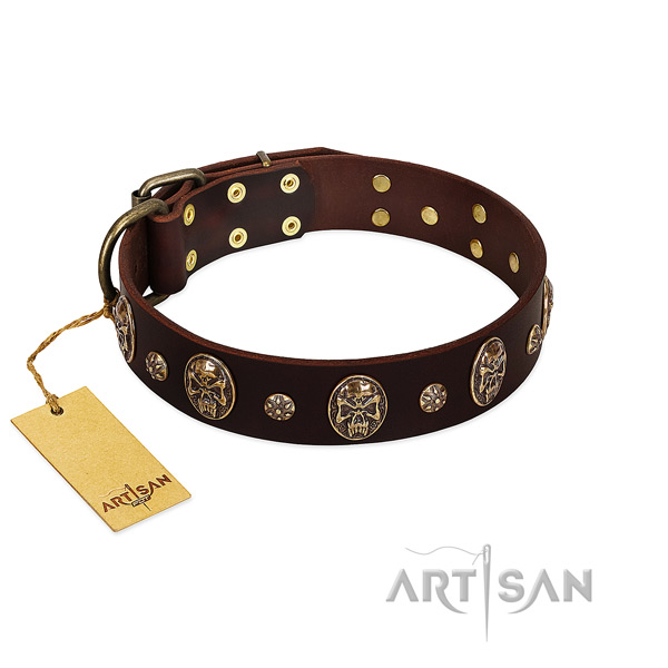 Stylish genuine leather collar for your canine