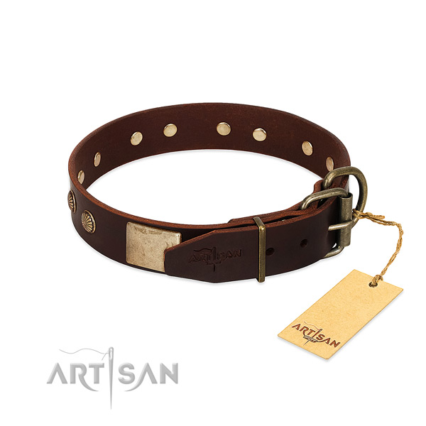 Rust resistant buckle on basic training dog collar