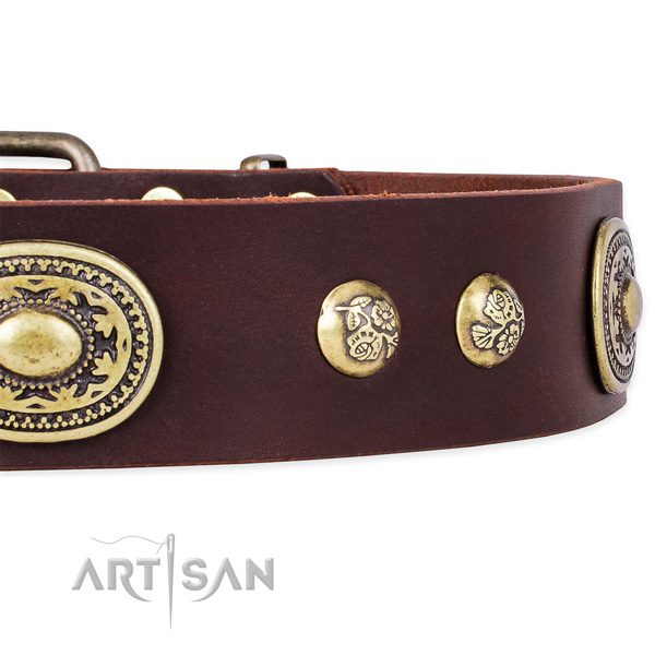 Easy wearing full grain leather collar for your beautiful four-legged friend