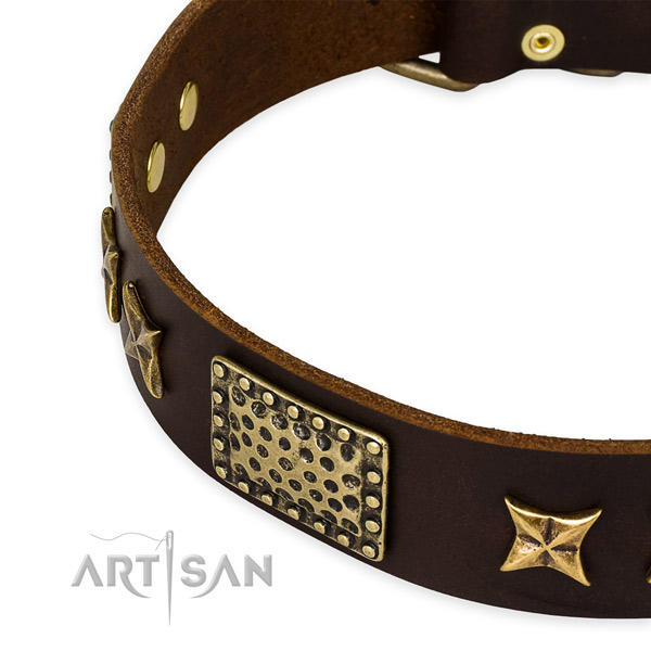 Full grain genuine leather collar with reliable hardware for your stylish dog