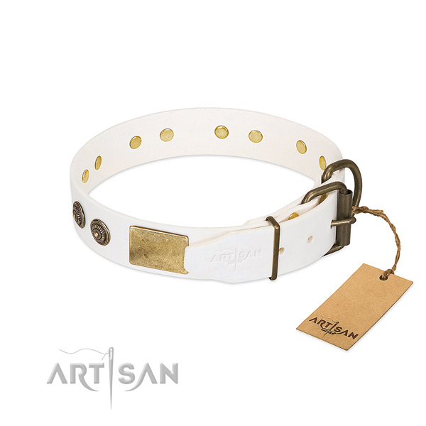 Strong hardware on full grain leather collar for walking your canine