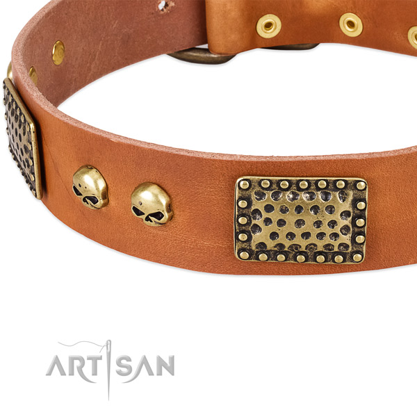 Strong fittings on natural leather dog collar for your doggie