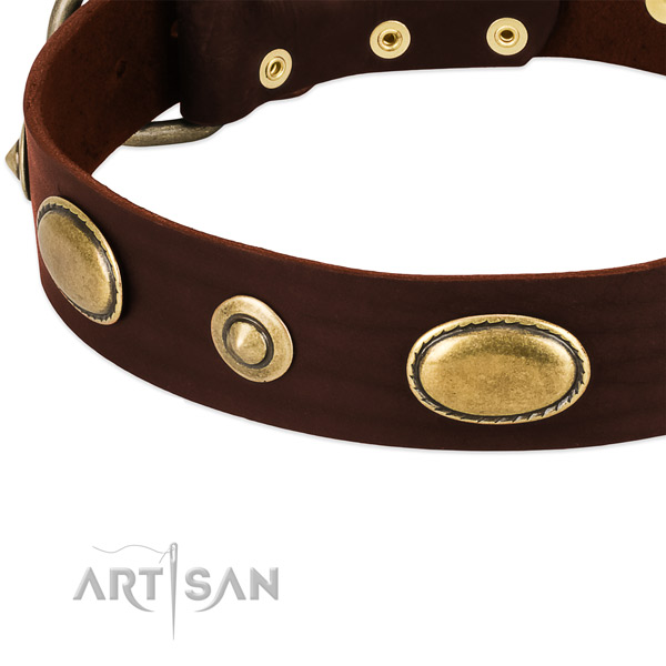 Corrosion proof embellishments on natural leather dog collar for your dog