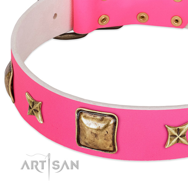 Genuine leather dog collar with stylish design studs