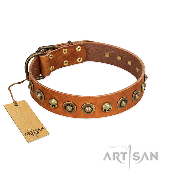 Genuine leather collar with top notch adornments for your doggie