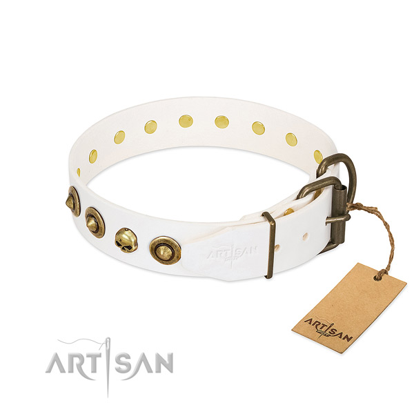 Natural leather collar with impressive decorations for your canine