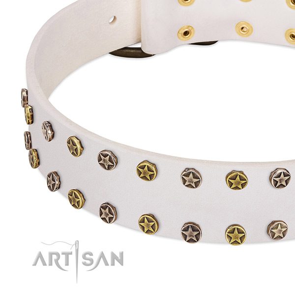 Stylish design studs on genuine leather collar for your pet