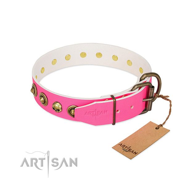 Full grain leather collar with amazing adornments for your four-legged friend