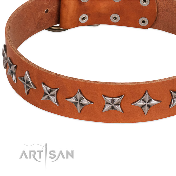 Comfortable wearing embellished dog collar of finest quality genuine leather