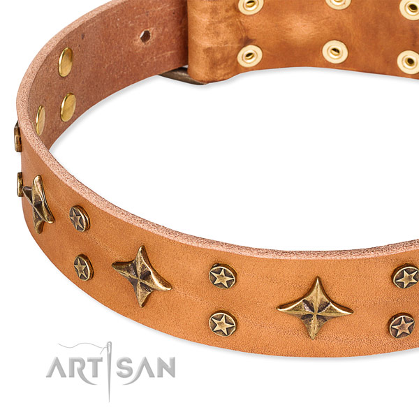 Comfy wearing decorated dog collar of finest quality leather
