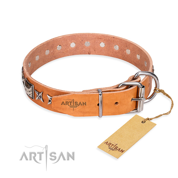 High quality studded dog collar of natural leather