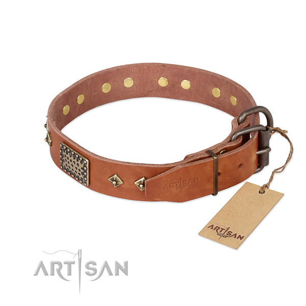 Natural leather dog collar with rust resistant D-ring and studs