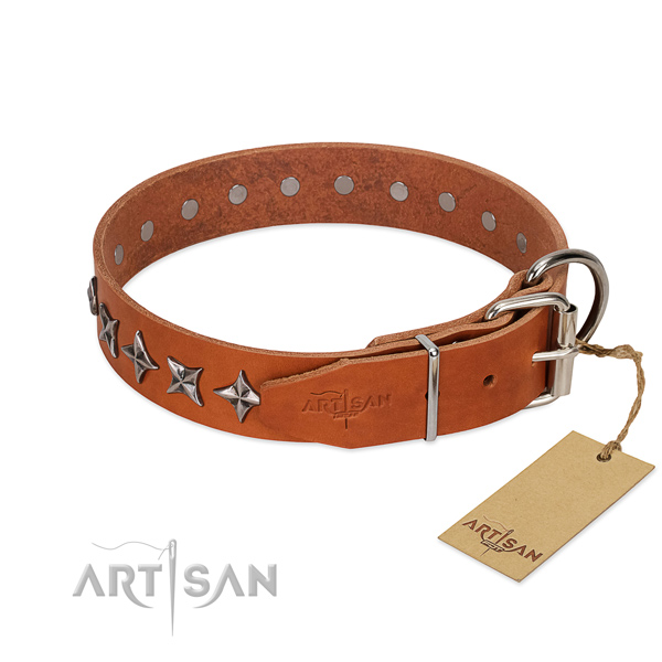 Comfy wearing studded dog collar of high quality genuine leather