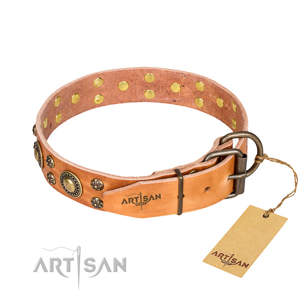 Daily walking embellished dog collar of top quality full grain natural leather