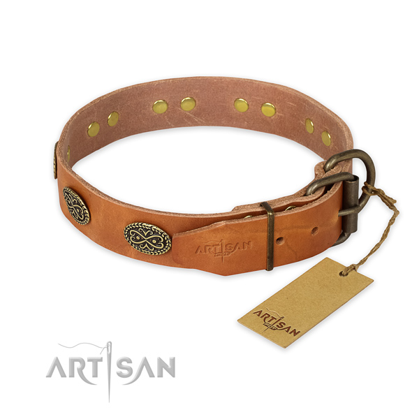 Corrosion proof buckle on full grain leather collar for stylish walking your canine
