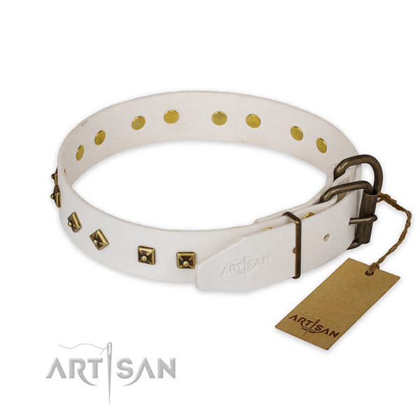 Strong fittings on full grain leather collar for everyday walking your pet