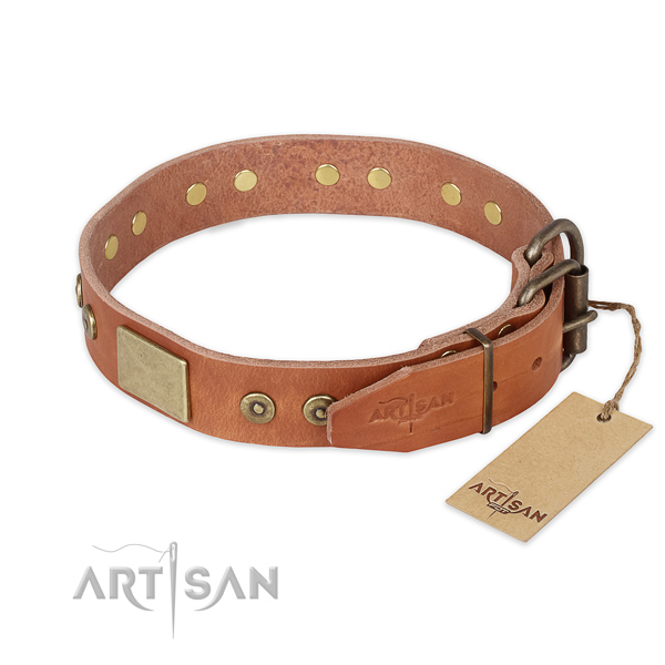 Corrosion proof fittings on natural genuine leather collar for daily walking your pet