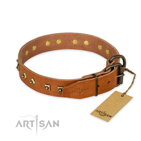 Corrosion resistant traditional buckle on leather collar for daily walking your dog