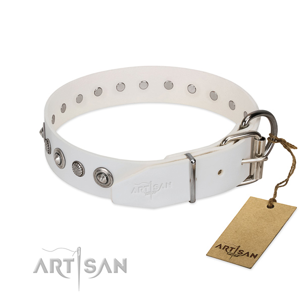 Top notch leather dog collar with exquisite adornments