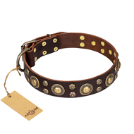 Flower Melody' FDT Artisan Brown Leather German Shepherd Collar with Mixed Studs