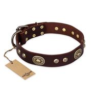 """Breath of Elegance"" FDT Artisan Decorated with Plates Brown Leather German Shepherd Collar"