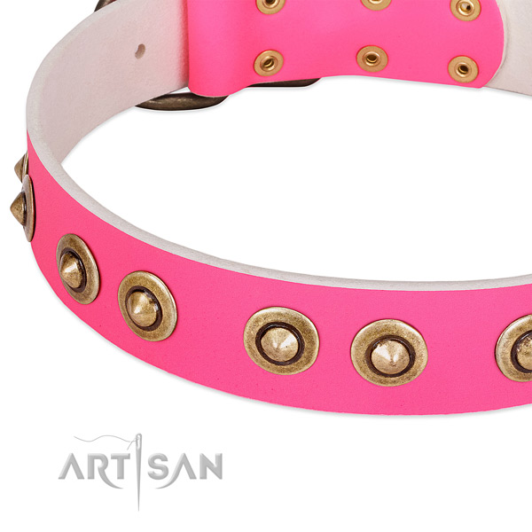 Rust resistant decorations on natural genuine leather dog collar for your four-legged friend
