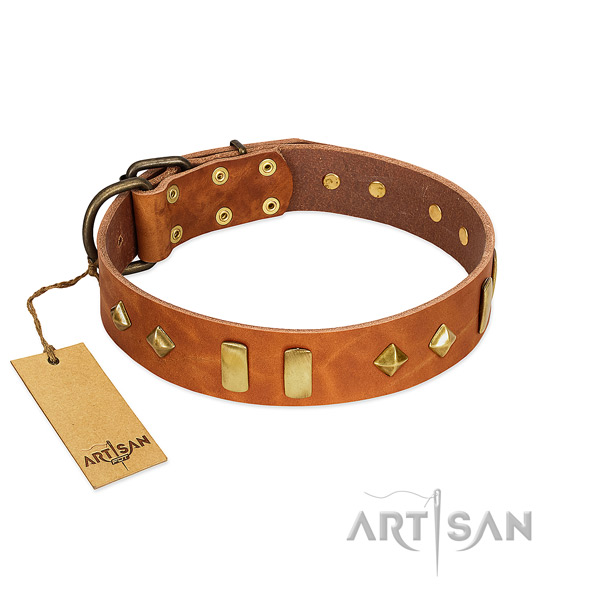 Walking flexible natural leather dog collar with studs