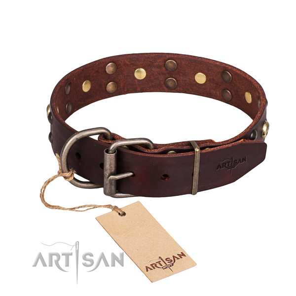 Walking decorated dog collar of top notch full grain leather
