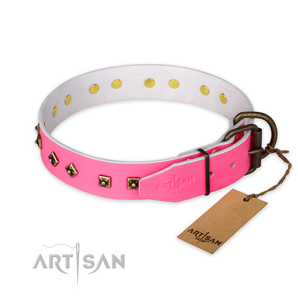 Reliable buckle on full grain genuine leather collar for basic training your canine
