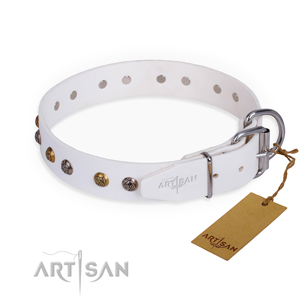 Full grain genuine leather dog collar with fashionable durable studs