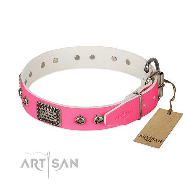 Rust-proof hardware on walking dog collar