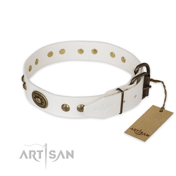 Corrosion resistant D-ring on genuine leather collar for everyday walking your canine