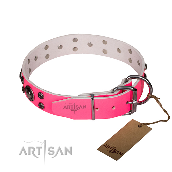 Everyday walking adorned dog collar of strong leather