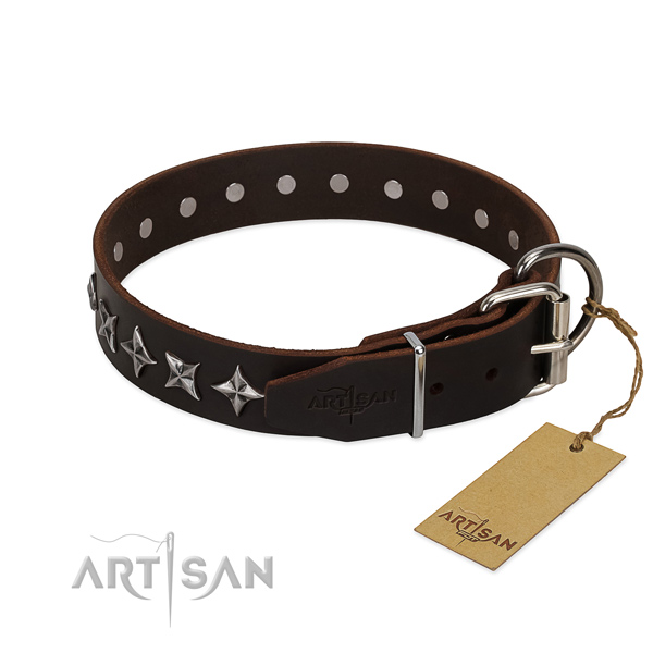 Walking decorated dog collar of fine quality leather